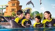 Скандал на Хайнане - вокруг The Atlantis, дельфинов и Thomas Cook