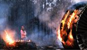 Дым от пожаров в Австралии достиг Южной Америки