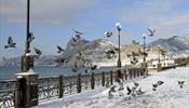 Аксенов требует составить «черный список» отелей Крыма
