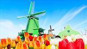 Действительно ли Голландия хочет меньше туристов?