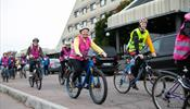 Вело-парадоксы Выборга