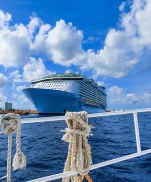 В пробных круизах с Royal Caribbean захотели принять участие 100 000 добровольцев