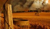 Австралия платит жестокую цену за отрицание проблемы климата своими политиками