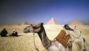 """Туристов """"Эль-Вояж» вывезли из Хургады – коллективными усилиями"""