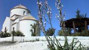 Кипр ожидает спад