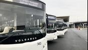 В «Пулково» пошли новые автобусы